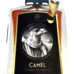 camel edgy