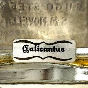 calicantus label